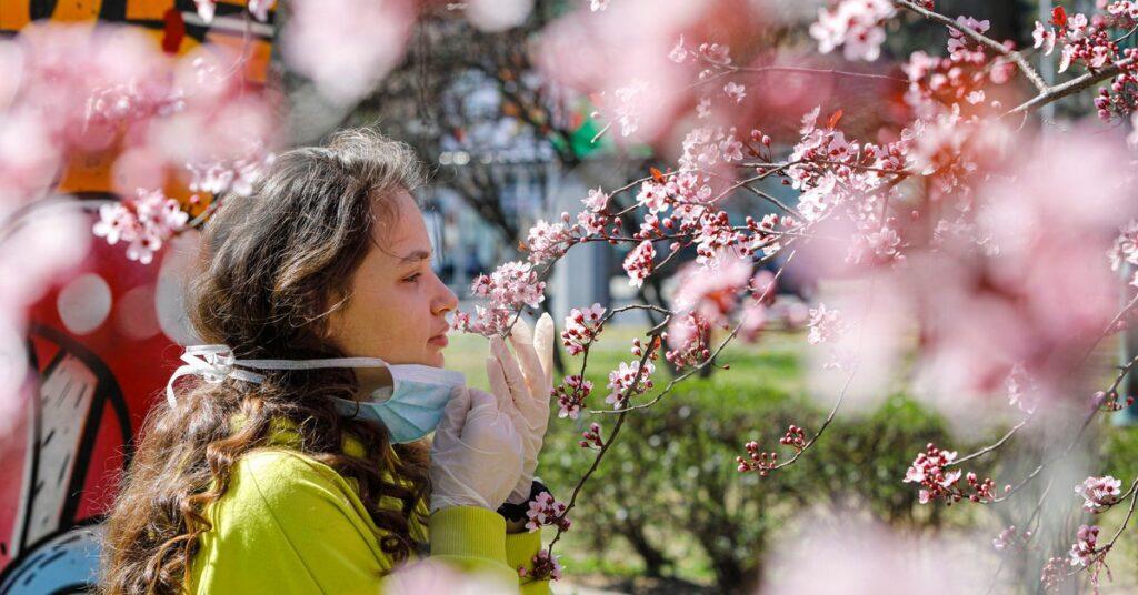 El 87% de los pacientes graves experimentaría persistencia de síntomas luego de sanarse